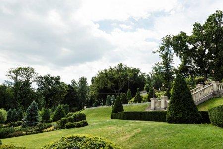 Photo pour Sapins et buissons sur l'herbe fraîche près des escaliers en béton blanc - image libre de droit