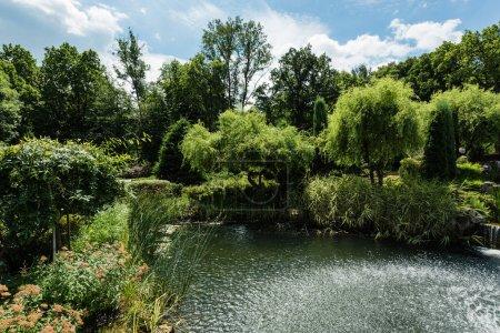 Photo pour Arbres et buissons verts près du lac dans le stationnement d'été - image libre de droit