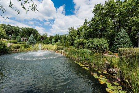 Photo pour Éclaboussures d'eau près de fontaine dans le lac près des pins et des feuilles de nénuphar - image libre de droit