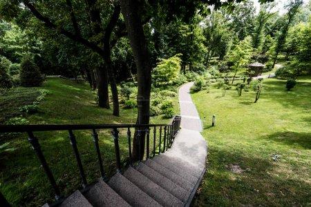 Foto de Escaleras de hormigón cerca de la pasarela y árboles verdes en la hierba - Imagen libre de derechos