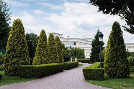 Photo pour Allée, lampadaire et sapins verts près de la maison blanche - image libre de droit