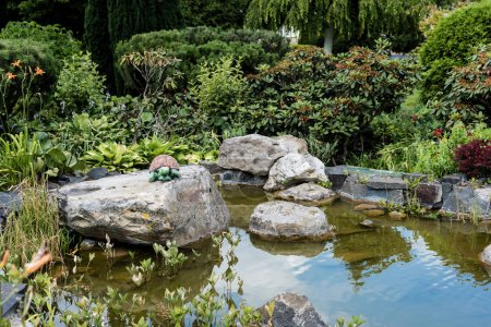 Photo pour Wet stones in pond with water near green bushes in park - image libre de droit