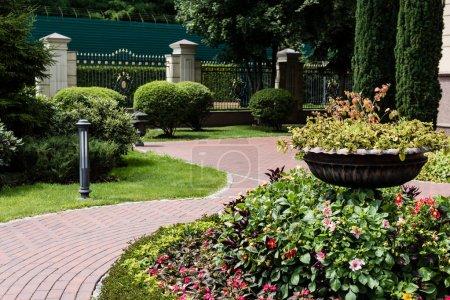Photo pour Lampe de jardin sur herbe près des buissons verts et clôture métallique - image libre de droit