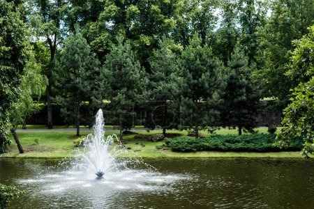 Foto de Green trees with fresh leaves near fountain in pond - Imagen libre de derechos