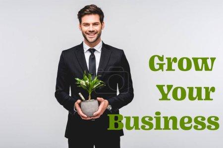 Photo pour Homme d'affaires souriant en costume tenant pot de fleurs avec arbre d'argent isolé sur gris avec croître votre illustration d'entreprise - image libre de droit