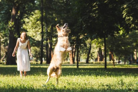 Photo for Full length view of young girl in white dress smiling and looking at jumping golden retriever on meadow - Royalty Free Image