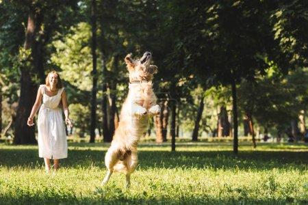 Photo pour Vue pleine longueur de jeune fille en robe blanche souriant et regardant sauter golden retriever sur prairie - image libre de droit