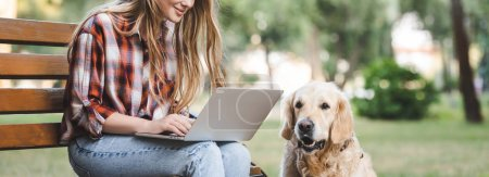 panoramic shot of beautiful girl in casual clothes using laptop while sitting on wooden bench in park near golden retriever