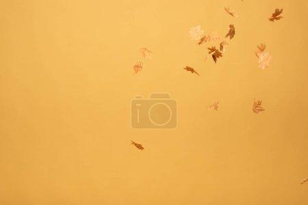 Photo pour Feuilles d'érable dorées tombant isolées sur jaune - image libre de droit