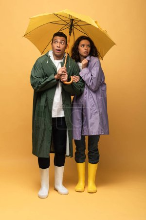 Foto de Asustado pareja interracial en impermeables y botas de goma sosteniendo paraguas sobre fondo amarillo - Imagen libre de derechos