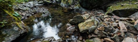 Photo pour Plan panoramique de moisissure verte sur des pierres près de la rivière - image libre de droit