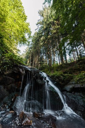water falling on wet stones in woods