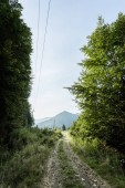 """Постер, картина, фотообои """"зеленые деревья возле гор на фоне голубого неба"""""""