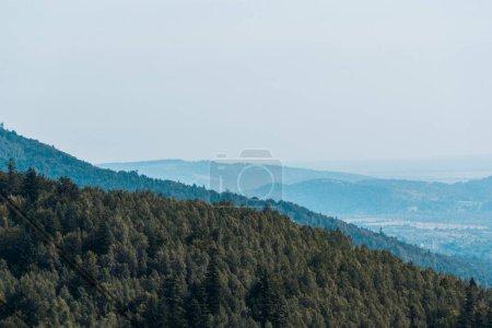 Photo pour Montagnes près des arbres verts contre le ciel bleu - image libre de droit