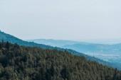 """Постер, картина, фотообои """"горы возле зеленых деревьев на фоне голубого неба"""""""