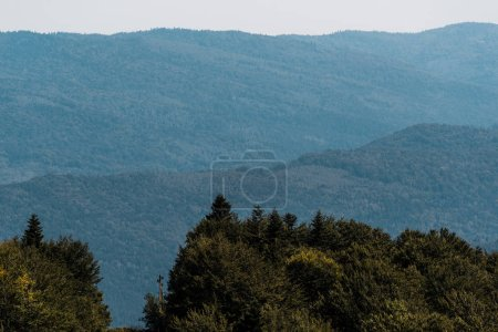 Photo for Tranquil mountains near green trees against sky - Royalty Free Image