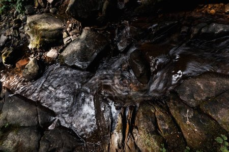 Photo pour Vue de dessus de l'eau qui coule sur les pierres humides dans la forêt - image libre de droit