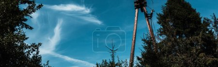 Photo for Panoramic shot of blue sky with clouds in park - Royalty Free Image