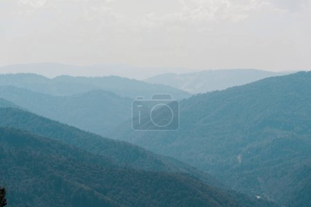 Photo for Scenic mountain valley with green trees against sky - Royalty Free Image