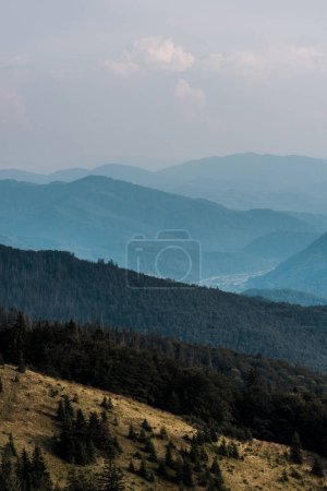 Photo for Meadow in mountains with green trees against sky with clouds - Royalty Free Image