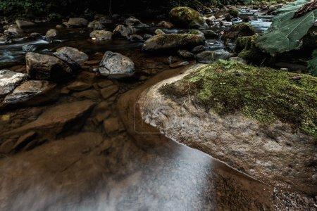 Photo pour Vue aérienne de la moisissure verte sur les pierres humides près de la rivière - image libre de droit