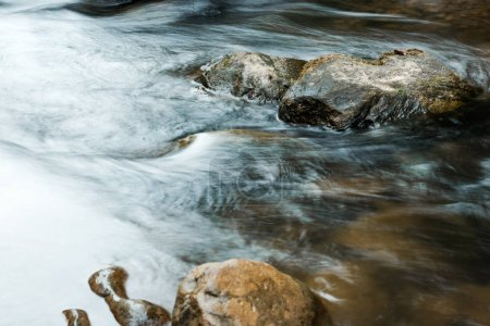 selective focus of wet stones near flowing brook