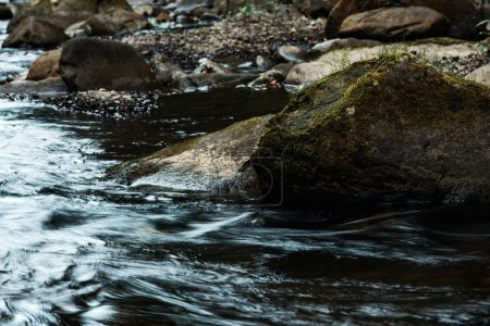 selective focus of rocks with green mold near flowing stream