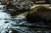 """Постер, картина, фотообои """"селективное фокус пород с зеленой плесенью возле течет поток"""""""