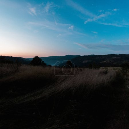 Photo for Sunset in forest against blue sky with clouds - Royalty Free Image
