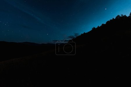 Photo for Sky with shining stars near trees at night - Royalty Free Image
