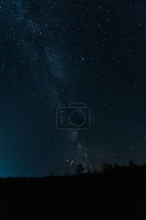 Photo for Milky way on sky in dark forest at night - Royalty Free Image