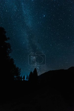 Photo for Milky way on blue sky in woods at night - Royalty Free Image