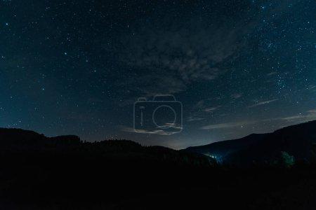 Photo pour Hausse de manière laiteuse dans la forêt foncée la nuit - image libre de droit