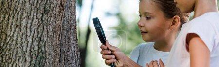 Photo pour Plan panoramique d'enfants heureux regardant tronc d'arbre à travers loupe - image libre de droit
