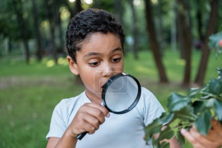 Photo for Selective focus of shocked african american child looking at leaves through magnifier - Royalty Free Image
