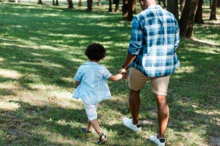Photo pour Vue arrière du père et du fils afro-américains marchant et se tenant la main dans le parc - image libre de droit