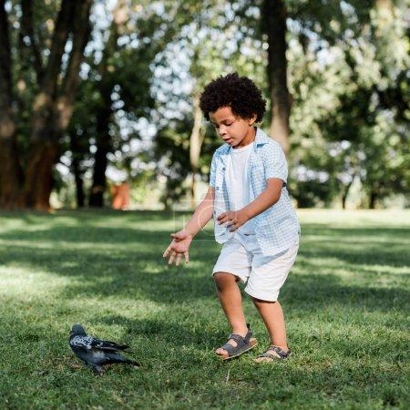 Photo pour Mignon afro-américain enfant geste tout en regardant pigeon - image libre de droit