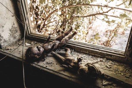 Photo pour Foyer sélectif de poupées effrayantes et brûlées près de la fenêtre, concept post-apocalyptique - image libre de droit