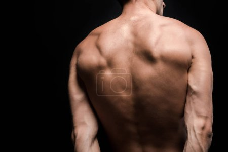 Photo for Cropped back view of shirtless man posing isolated on black - Royalty Free Image