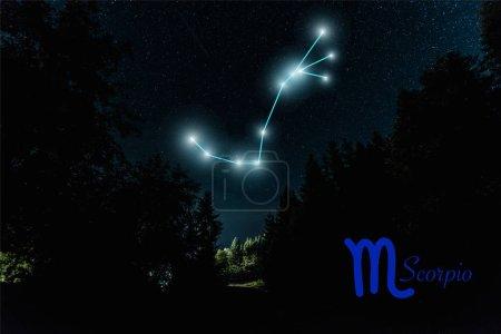 Photo pour Paysage sombre avec ciel étoilé nocturne et constellation de Scorpio - image libre de droit