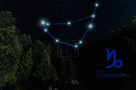 Photo pour Paysage sombre avec ciel étoilé nocturne et constellation de Capricornes - image libre de droit