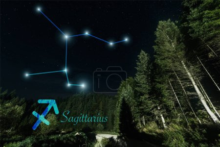 Photo for Dark landscape with trees, night starry sky and Sagittarius constellation - Royalty Free Image