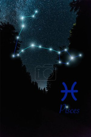 Photo for Dark landscape with night starry sky and Pisces constellation - Royalty Free Image