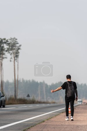 Photo for Back view of man with backpack hitchhiking on road near green trees - Royalty Free Image