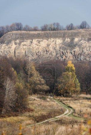 Photo pour Arbres verts près du chemin et des pierres contre le ciel bleu - image libre de droit