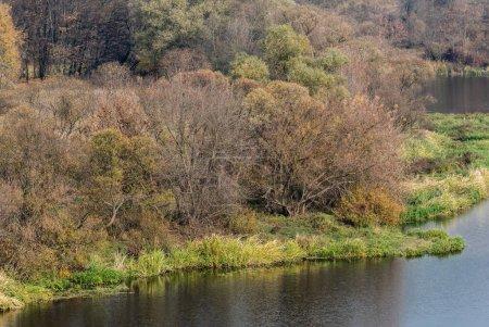Photo pour Étang avec de l'eau près de l'herbe verte et des arbres - image libre de droit
