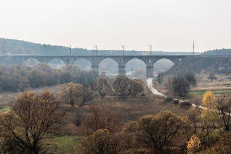 Photo pour Forêt avec verdoyante près du sentier et vieux pont - image libre de droit