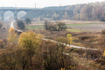 Photo pour Arbres verts dans la forêt près du sentier et vieux pont - image libre de droit