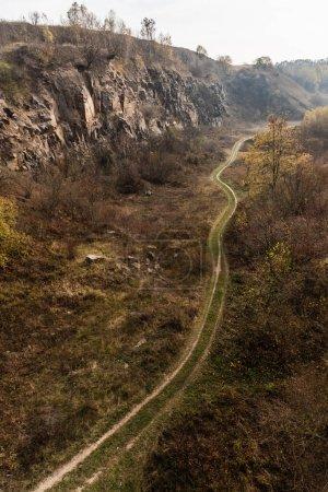 Photo pour Allée près de l'herbe verte, des arbres et des pierres - image libre de droit