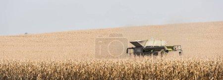 concept panoramique de récolte de tracteur champ de blé